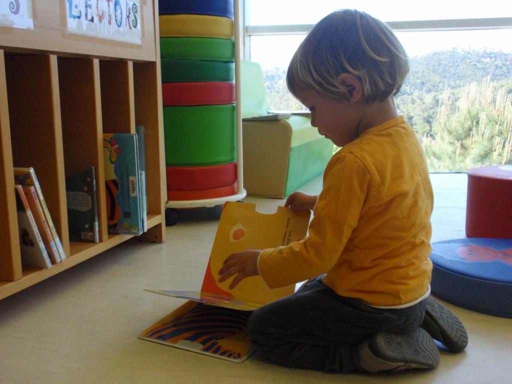 biblioteca josep miracle