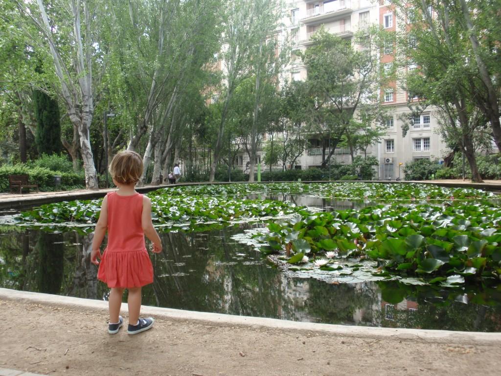 Llac Turó Park