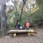 taula vallvidrera