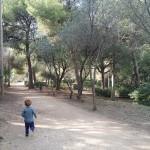 bosque-parque-oreneta